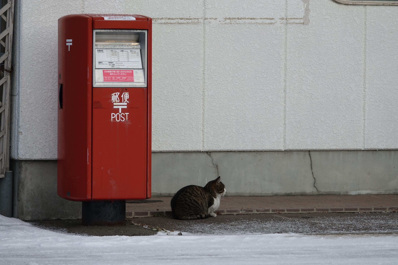 ポスト どっち 郵便